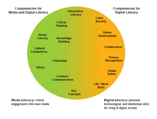 Digital & Media Literacy chart